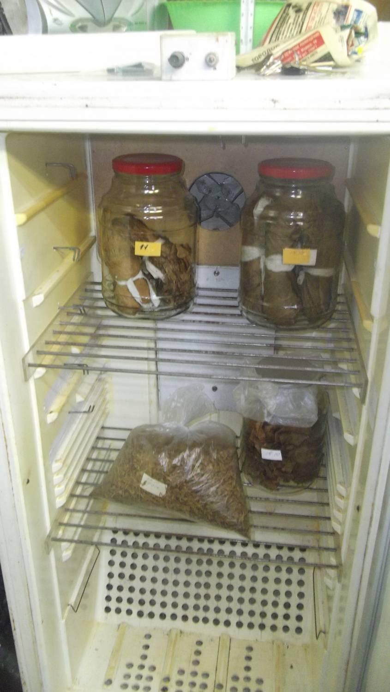 Шкаф для табака своими руками 542